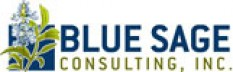 BLUE SAGE Consulting, Inc.